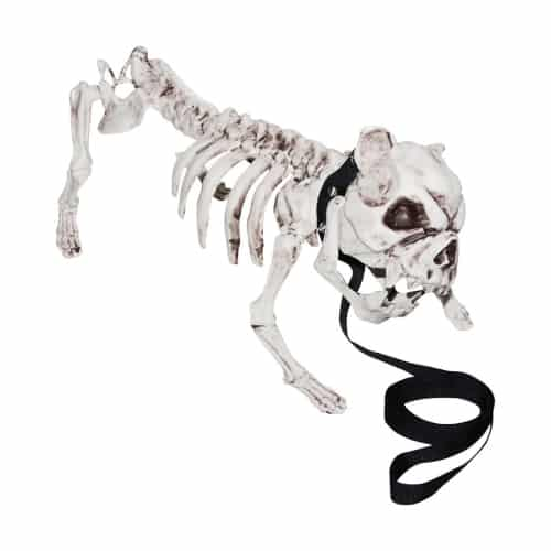 Skeleton Dog Prop