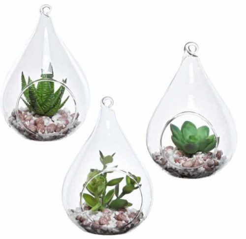 Hanging Succulent Containers
