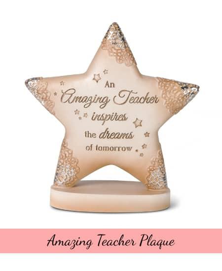 Amazing Teacher Plaque   great appreciation gift ideas for teacher appreciation week