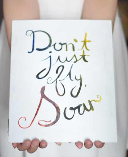 Don't Just Fly Soar Quote Painting