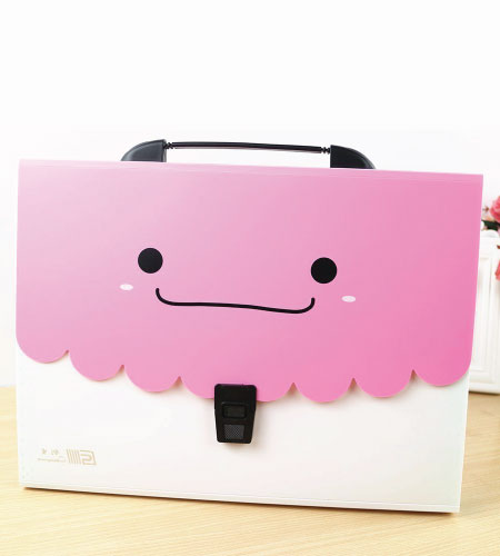 15+ Cute School Supplies for Kids: cute pink white folder