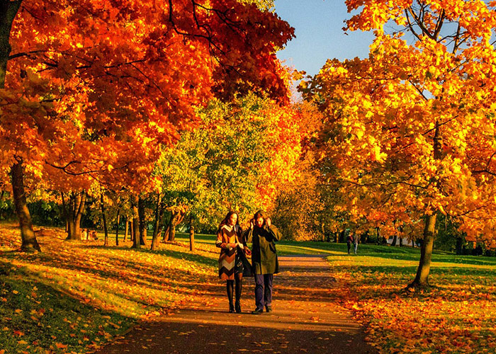 cheap fall date ideas