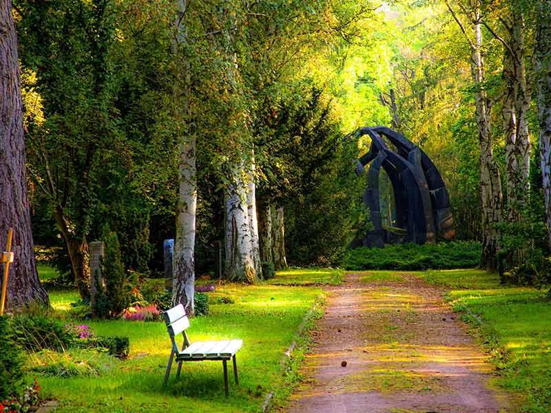 picnic date location - ideas