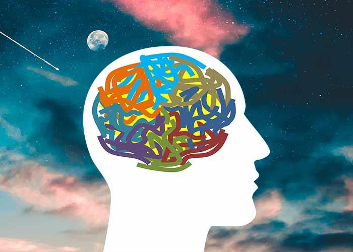 Psychiatrist / Psychologist