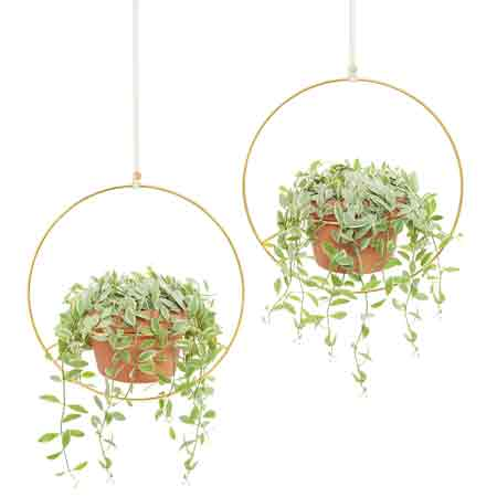 best-gifts-for-taurus-metal-hanging-planter