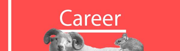Aries-rat career. Also: leadership and entrepreneurship