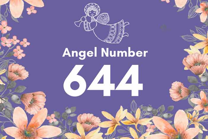 644 angel number